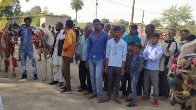 Photo of मध्यप्रदेश: निवाड़ी जिले में हर्सोउल्लास के साथ मनाई गई संत शिरोमणि रविदास जयंती